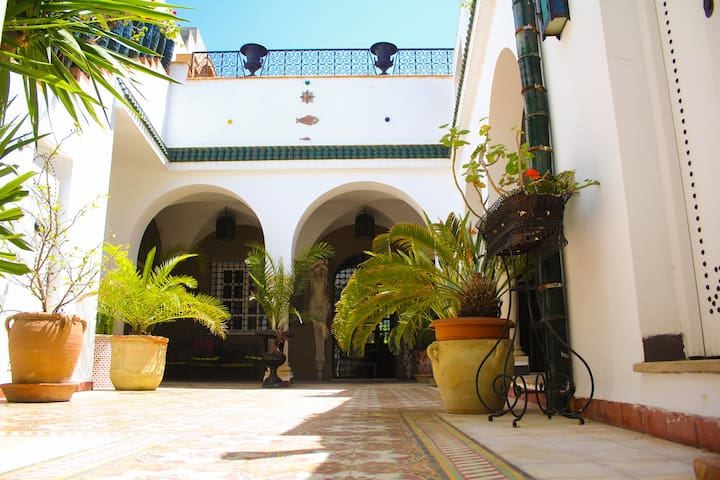 Authentic riad in Hammamet center. All the house