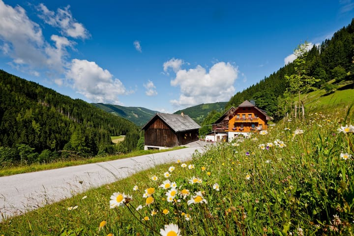 "Organic Farm in Ramsau am Dachstein""Grundlehnerhof - Ramsau am Dachstein - Bed & Breakfast"