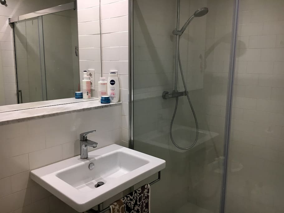 Shared bathroom with enormous shower!
