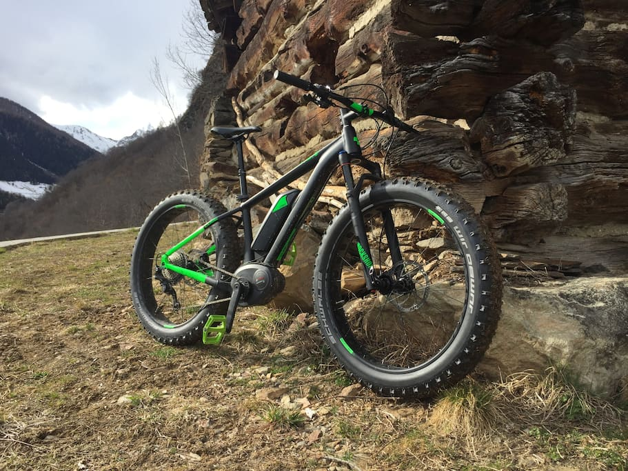 Rent e-Fat Bike at the request of our guests.