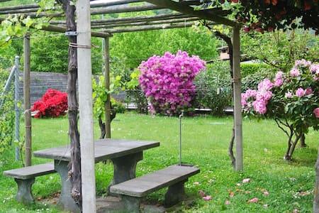 Appartamento vicino ad Ascona - Losone