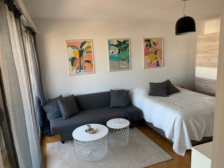 Small flat near SBB station and central Basel