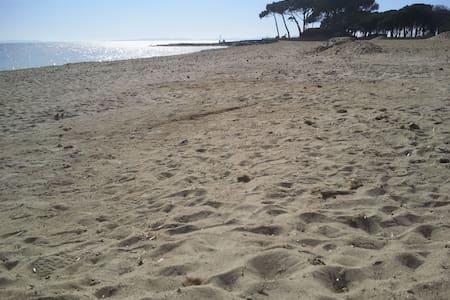 Les pieds dans l'eau dans le Var - La Londe-les-Maures - Huoneisto