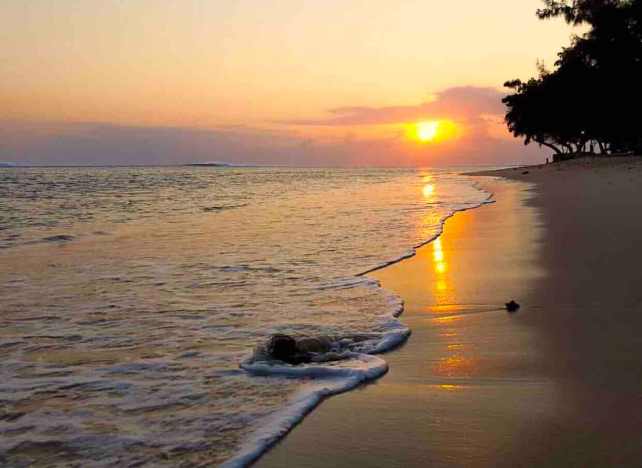 Enjoy the beautiful sunset and make your holiday memorable.