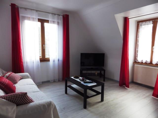 F5 spazioso rinnovato per 1 a 6 persone - Sainte-Marie-aux-Mines - Appartamento
