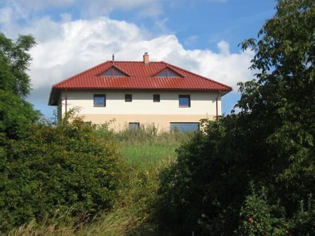 Penzion bez modrého páva - Kopřivnice - Hus
