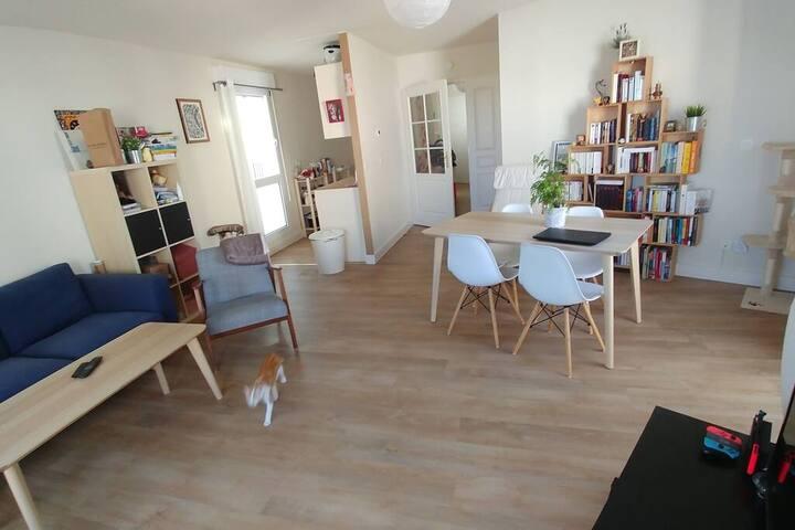 Appartement T3 (66m2 + terrasse)