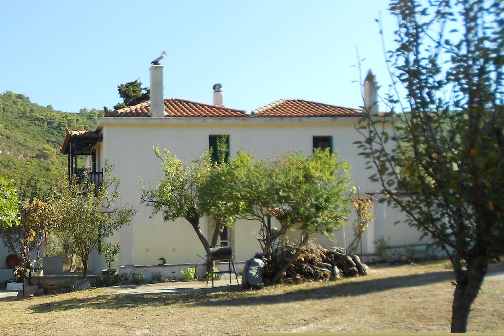 Dimitra's Cottage House