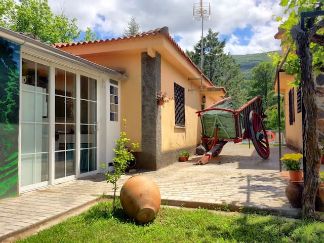 Bungalow Valle del Jerte - Casas del Castañar - Bungalow