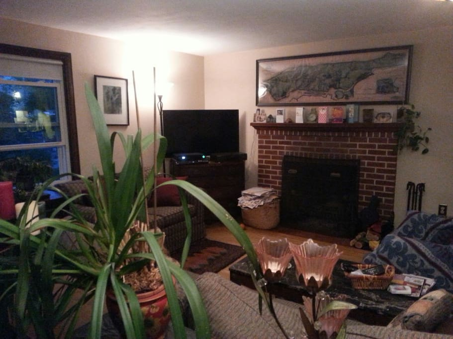 Fireplace, DVD, DVR, smartTV & WiFi