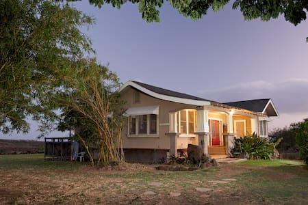 The Ishihara Home TVNC-1317