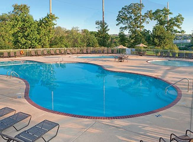 Minutes to Silver Dollar City! 4 Beds / Sleeps 6