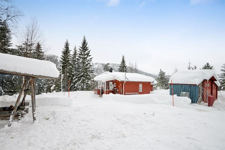 Flott hytte på Skrim
