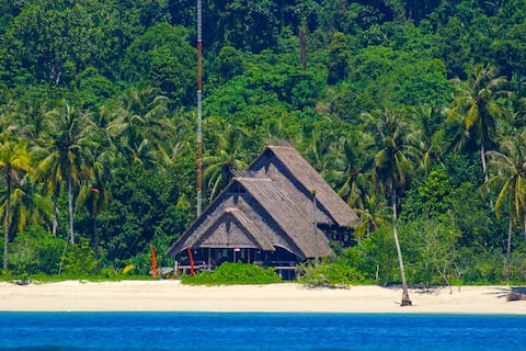 Mentawai paradise dream trip. Surf Train Relax.