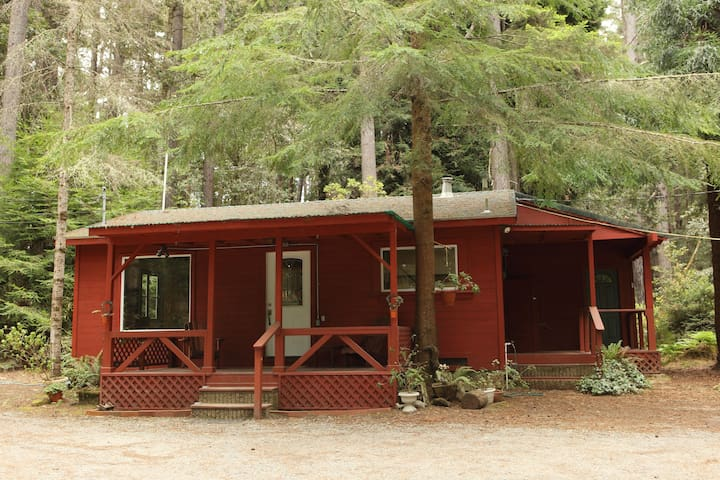 Kona Cabin in the Redwoods - Fort Bragg