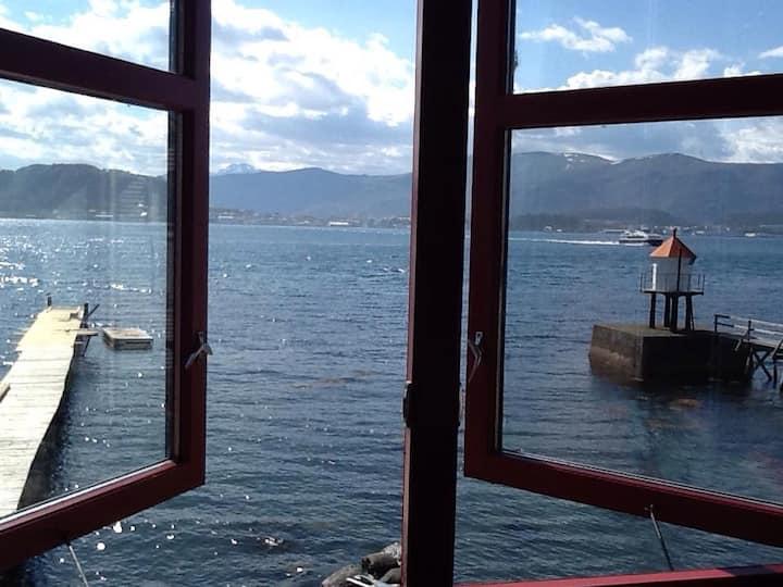 Rolig, utsikt, sjøkanten .