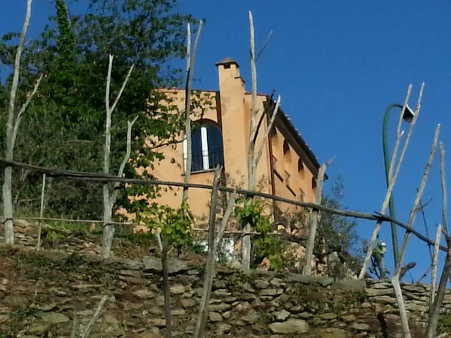 B & B Nelly G. camera matrimoniale - Canto - Bed & Breakfast