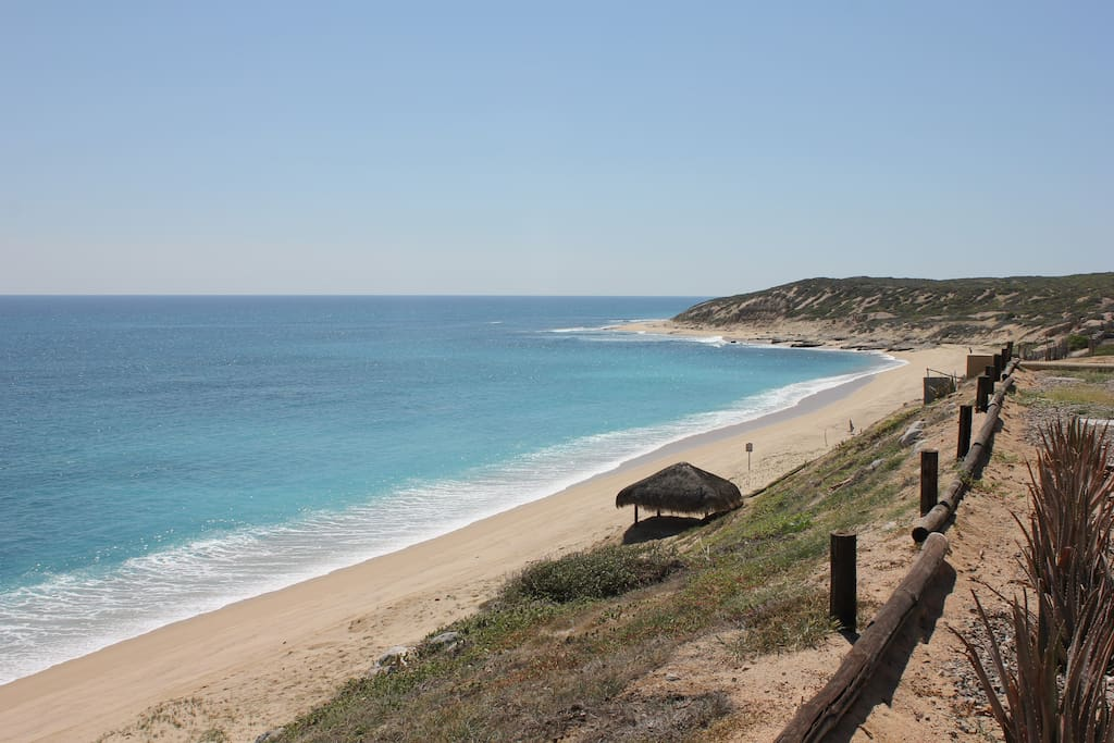 san jose del cabo big and beautiful singles Take a look at the top all-inclusive hotels in san jose del cabo, which, along with cabo san  the resort also attracts big  and while the beautiful beach is .