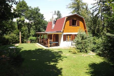 Holiday house on Vranov dam