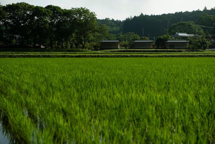 Tsutsuji2 - Nikko - House