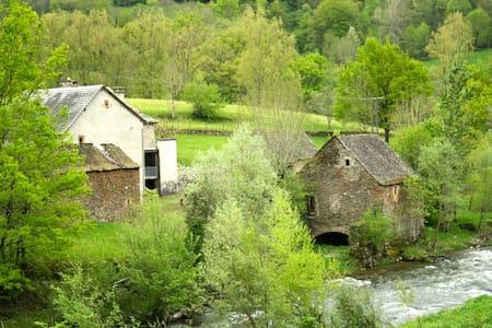 Ancien Moulin de Chipole pour 6 p. - St Geniez d'Olt - Apartament