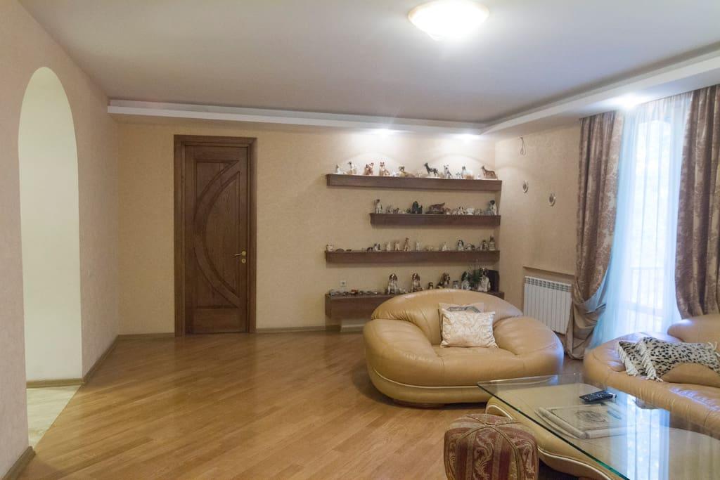 гостинаягостиная 40м