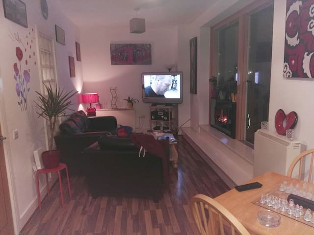 Nice warm welcoming 1 bed apartment - Dublin