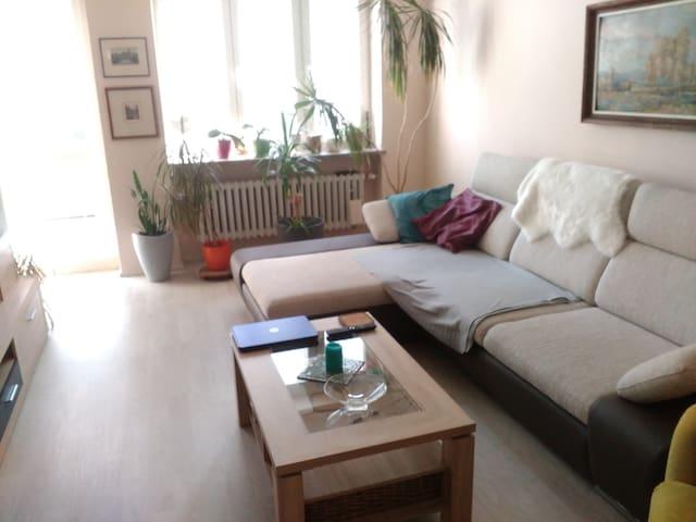 Pokoj v bytě po celkové rekonstrukci.