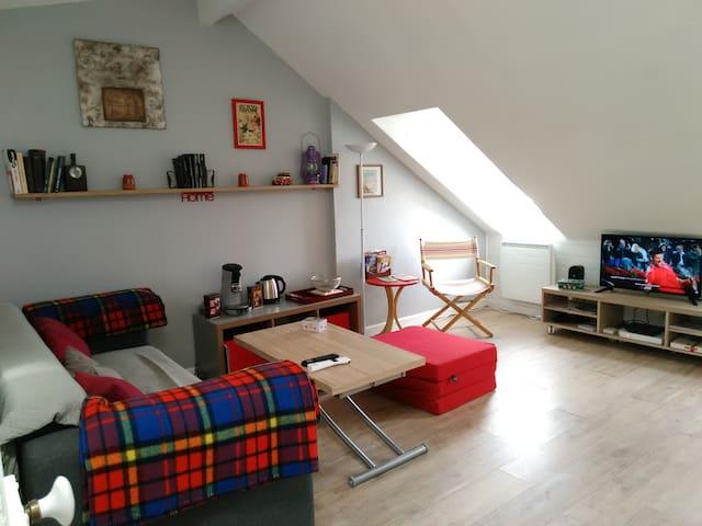 Salon : canapé, table relevable, pouf/matelas d'appoint, TV 80cm, WiFi fibre ...