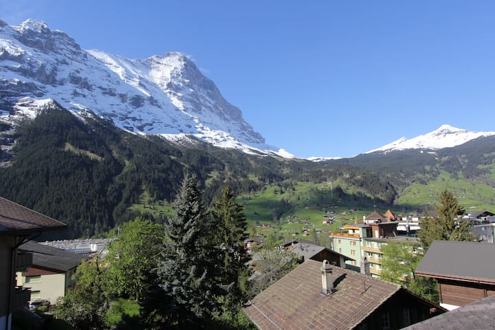 Wunderschöne Sicht auf das Bergpanorama und die Eigernordwand vom Balkon, Wohnzimmer und Schlafzimmer