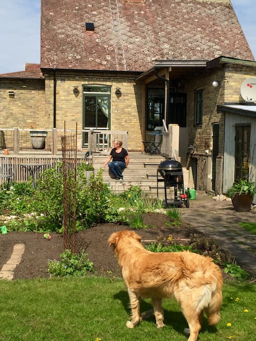 House from the backside
