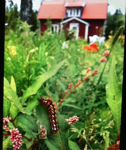 Villa i skogen nära stan - Vikingstad