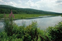 Borrow our binoculars to explore nearby Basha Kill Wetland, both peaceful and protected....