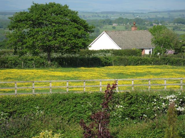 Meadowside, Welton.  Sleeps 4 + - Welton, Carlisle - Rumah