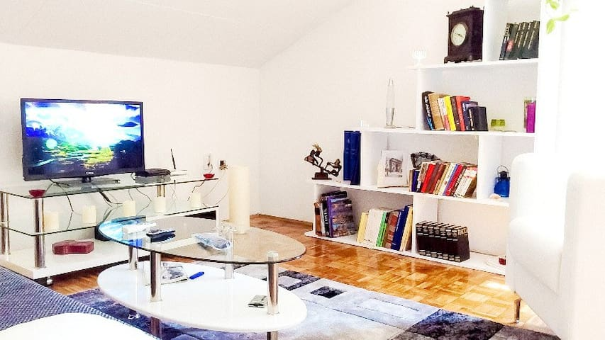 comfortable apartment for vacation - Banja Luka - Apartment