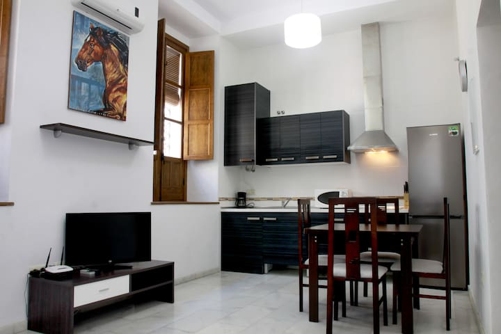 DUPLEX HISTORIC DISTRICT  - Cordoba - Appartement