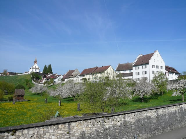 Im Klosterquartier  - Rheinau - Haus