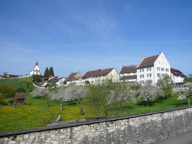 Im Klosterquartier  - Rheinau - House