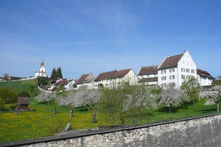 Im Klosterquartier  - Rheinau