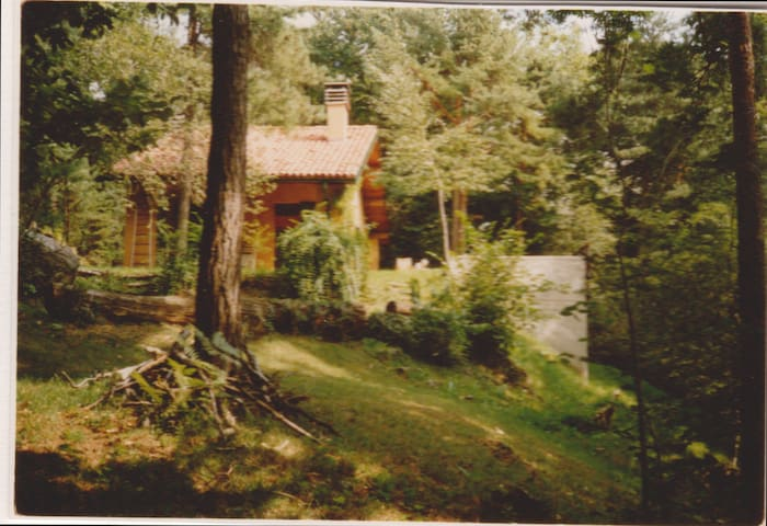 wood forest house romantic place - Albavilla - Hus
