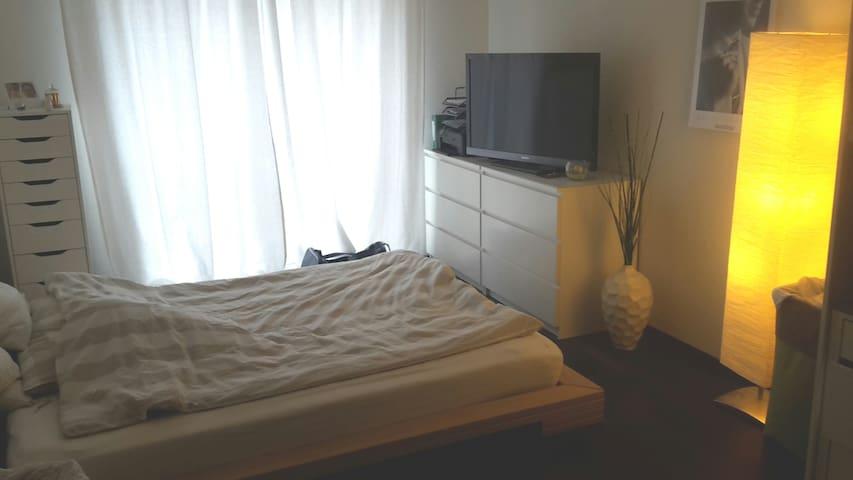 Schönes, helles Zimmer zu vermieten - Rümlang - Pis