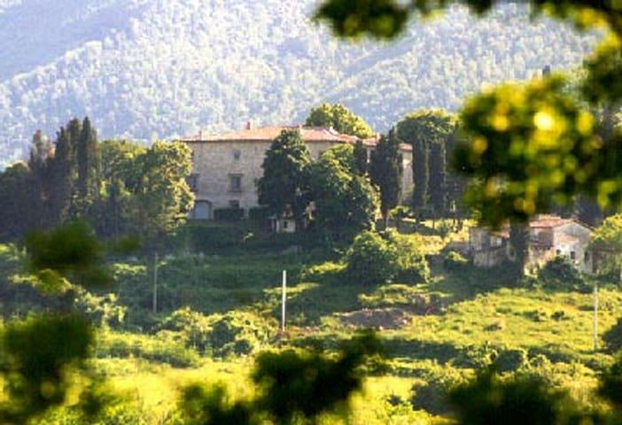 Medicean ancient Villa 6pax, near Florence,pool.