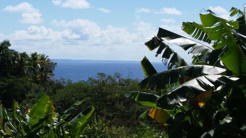 Studio Gosier vue mer avec jardin & Jaccuzi