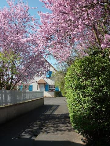 House with Garden-18 min from Paris - Cormeilles-en-Parisis - บ้าน