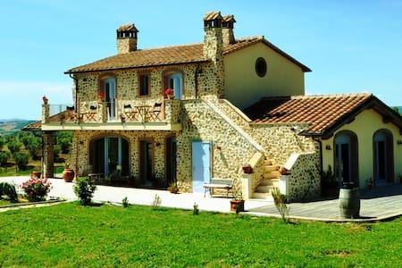 Casale pervinca - Marsiliana