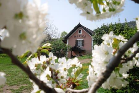 romantic reed roofed house Márika - Badacsonytomaj