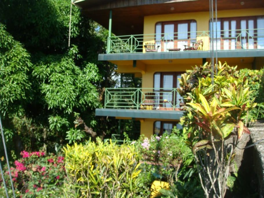 Hy jungle house three bedrooms two bathrooms houses for for Jungle house costa rica