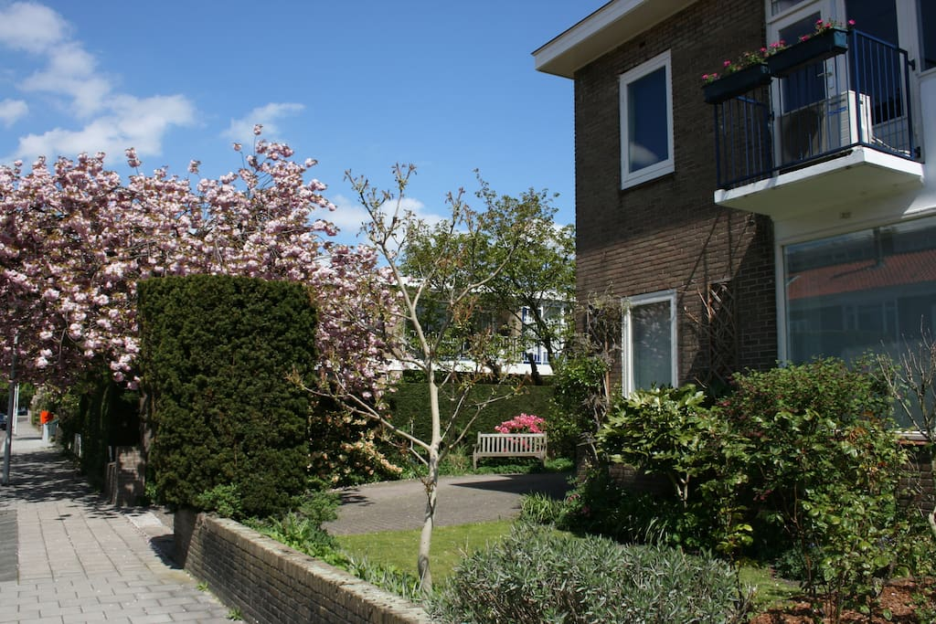 Garden view room private bathroom free parking ville for Case in affitto amsterdam lungo periodo