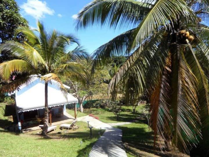 Bungalow créole dans un jardin tropical
