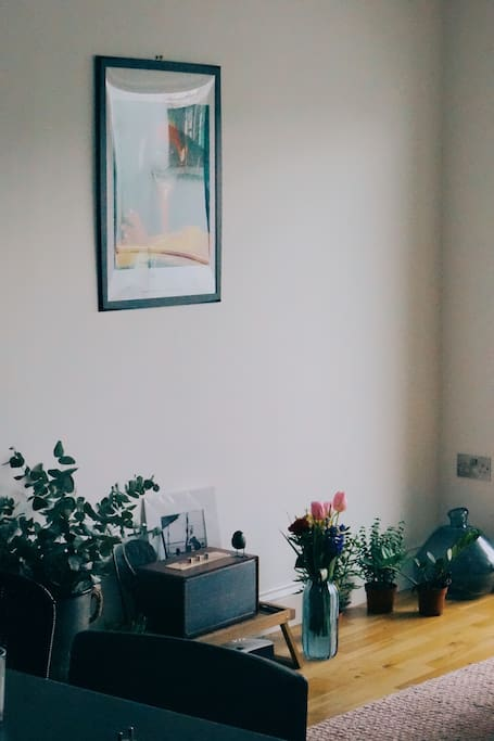 Plants, Bluetooth retro speaker to chill in a nice, cozy space after a day of explorations